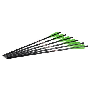 6 Stück 20 Excalibur Firebolt Carbonbolzen
